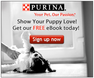 Screen shot 2012 04 13 at 12.14.44 PM *HOT* FREE Purinas Puppy Care eBook + FREE Samples and Special Offers!