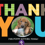 FREE Thank You card from Treat.com + FREE shipping!
