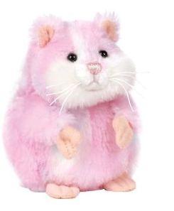 Amazin Hamster