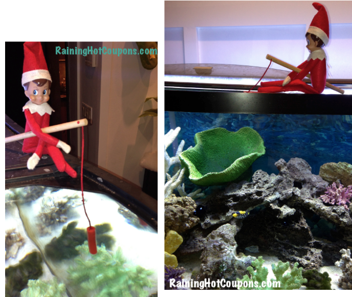 elf on the shelf4 Elf on the Shelf Ideas with Pictures (Over 50 Creative and Easy Ideas!)