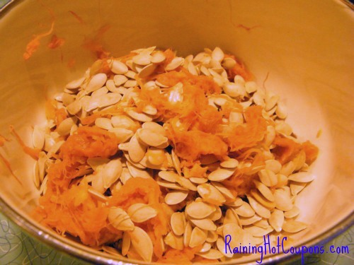 Raw Seeds Seasoned and Roasted Pumpkin Seeds Recipe (Great Healthy Snack!)