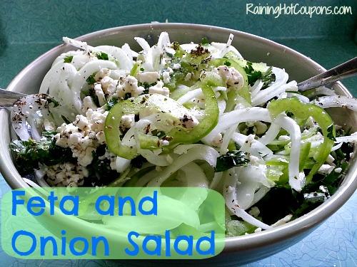 Feta and Onion Salad Main