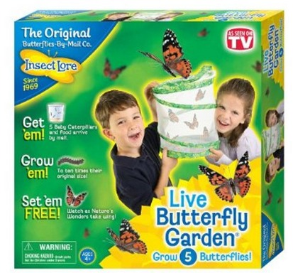 Amazon: Live Butterfly Garden ONLY $12.99 Shipped (Reg. $20)!
