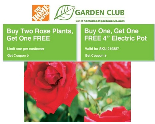 *HOT* The Home Depot: FREE Roses, $5.00 off Coupon, Buy 1 Get 1 FREE Perennials Coupon + More!