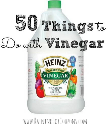 50 things to do with vinegar cooking cleaning laundry What kind of vinegar is used for cleaning
