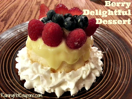 Berry Delightful Dessert Recipe ~ Perfect for a Hot Summer's Day!