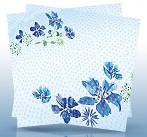 Dixie-Napkins-printable-coupon-Kmart-sale-300x281