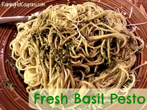 Fresh Basil Pesto Main