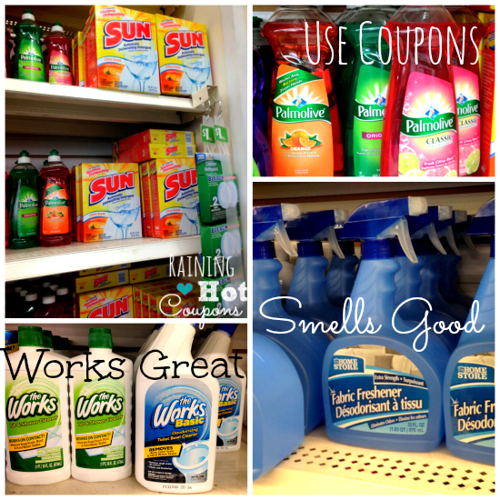 cleaning 4 What to Buy at the Dollar Store (And What Not to Buy!)
