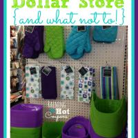 dollar store buys