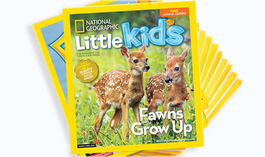 original Plum District: 20% Off All Orders = Great Deal on NatGeo Little Kids Magazine and More!