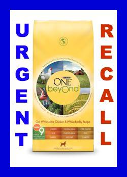 Purina Beyond Dog Food Recall