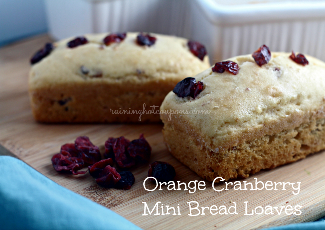 Orange Cranberry Mini Bread Loaves Recipe
