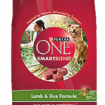 *HOT* FREE Bag of Purina ONE Dog Food Coupon ($9.50 VALUE!)