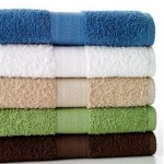 *HOT* The Big One Bath Towels Only $3.26 Shipped (Reg. $10!)
