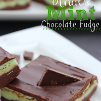 andes mint fudge.png