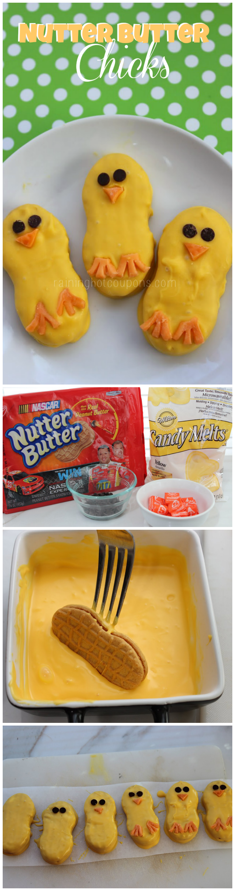 nutter butter chicks collage.png