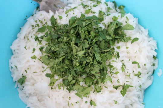 339.jpg39 Copycat Chipotle Lime Rice