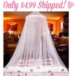 Amazon: White Elegant Lace Bed Canopy Only $4.99 Shipped