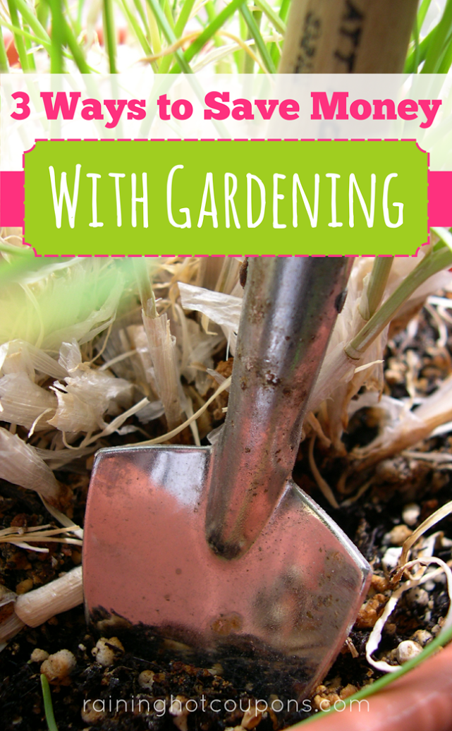 garden 3 Ways To Save Money With Gardening