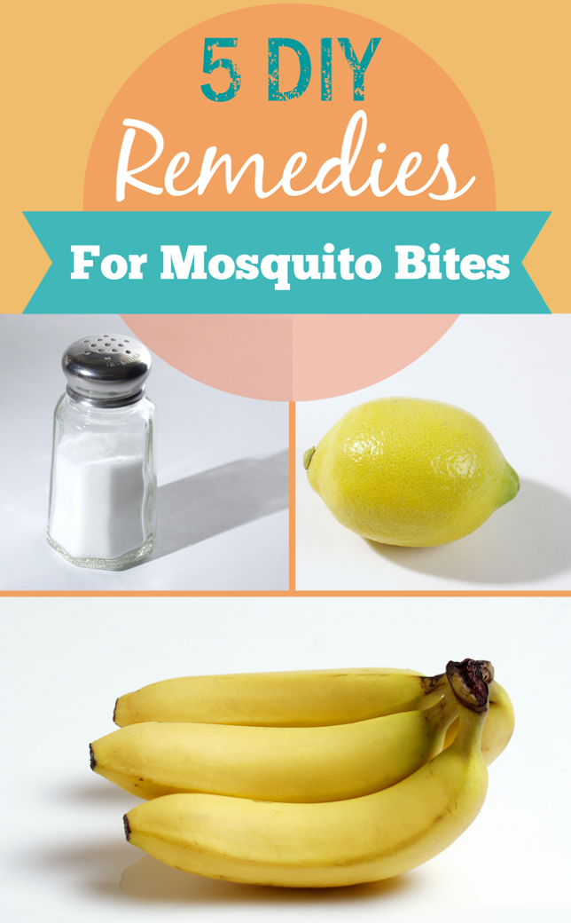 bites 5 DIY Remedies For Mosquito Bites