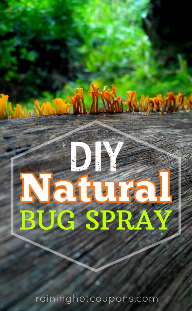 bug DIY Natural Bug Spray