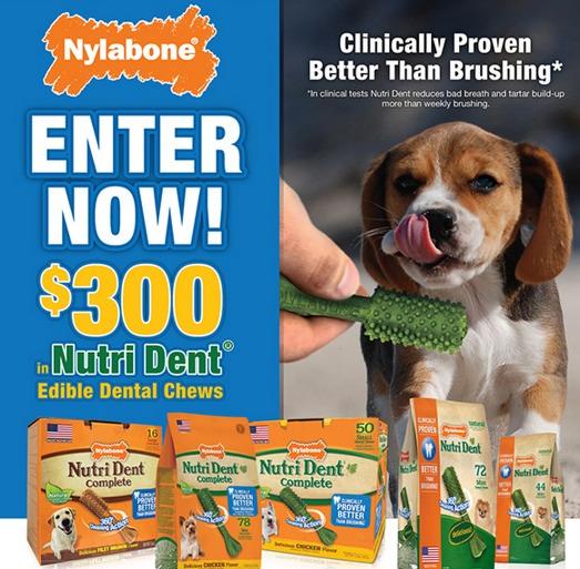 Win $300 Worth of Nutri Dent Edible Dental Chews