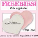 FREE pair of Regular Bamboobies Nursing Pads (Just Pay $2.95 Shipping) Reg. $15+!