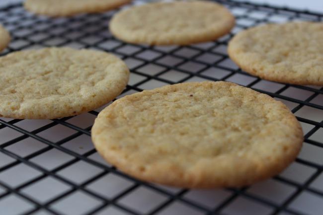 443 Eggnog Cookies