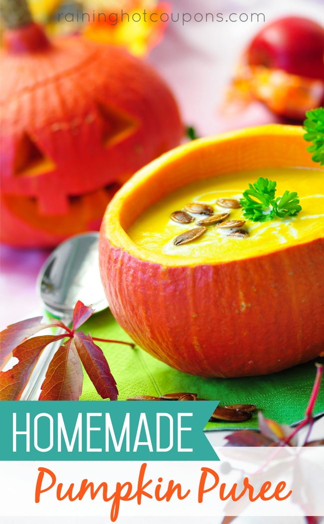pumpkin Homemade Pumpkin Puree