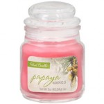 Walgreens: Patriot Candles Only $0.84 (Today Only)