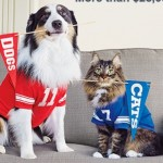 Purina Prize Bowl Instant Win Game: INSTANTLY Win 1 of 1,130 FREE Purina Products (Dyson Vacuum, Dog Beds, Cat Scratchers)
