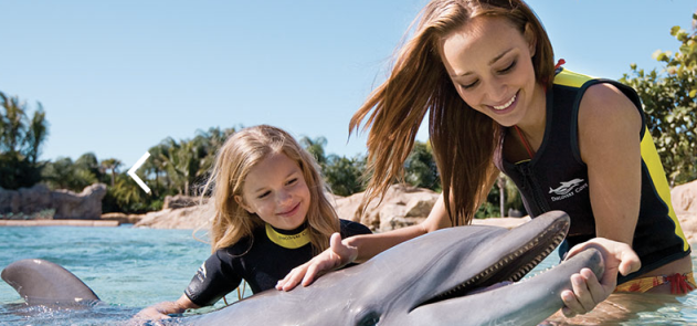 Calling All Of You Florida Residents! Right Now, Through December 31st  2015, Kids Ages 5 And Under Can Get In Busch Gardens Tampa AND SeaWorld  Orlando For ...