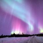 FREE Alaska Planner!