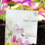 FREE Feed a Bee Wildflower Mix 200 Seed Packet