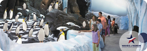 Free discounted tickets to seaworld parks entertainment for military for Busch gardens free military tickets