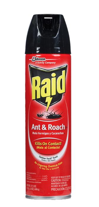 product-large-raid-ant--roach-killer---outdoor-fresh