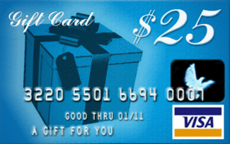 Image result for $25 Visa Gift Card