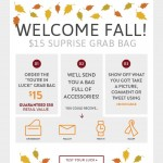 *HOT* BuyNowOrNever: $50 Worth of Fall Items ONLY $15 (Watch, Scarf, Jewelry, Handbag and more!)