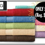 The Big One Bath Towels ONLY $2.54 (Reg. $9.99)
