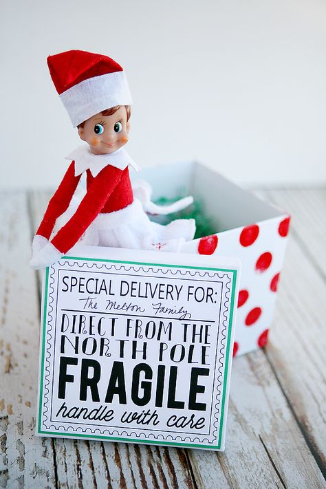 LOTS of Elf on the Shelf Ideas 22
