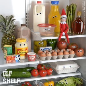 LOTS of Elf on the Shelf Ideas9