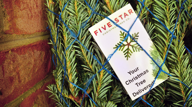 now through 1117 to can get 50 off a fraser fir christmas tree or wreath with five star